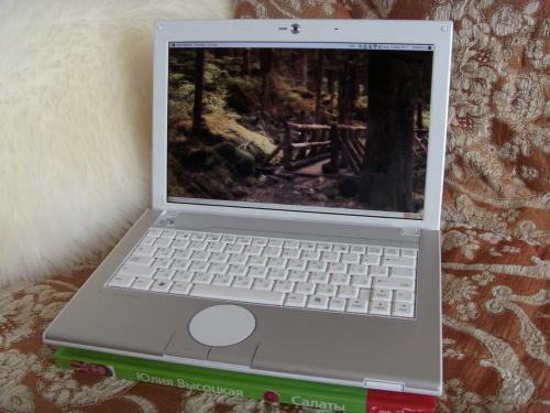 Packard Bell Easynote BG46