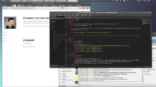 Mint 12 web-coding