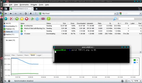 lighttpd+WebUI+rtorrent