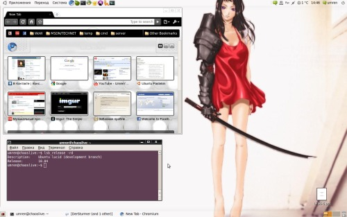 Ubuntu 10.04 alpha3