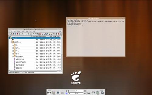 Ubuntu + XFCE