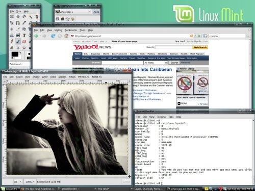 Linux Mint 3.0