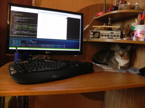 Мой рабочий стол ;)