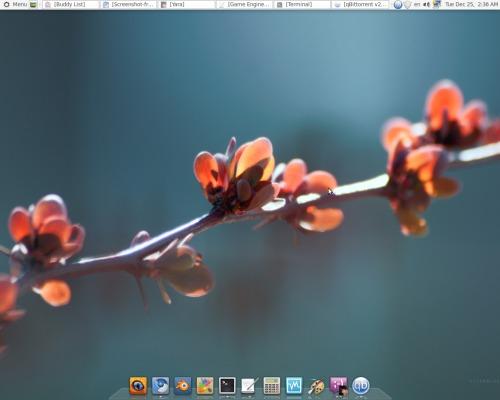 Мое рабочее окружение Linux Mint