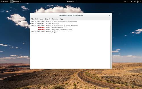 Linux на MacBook Pro как основная система.