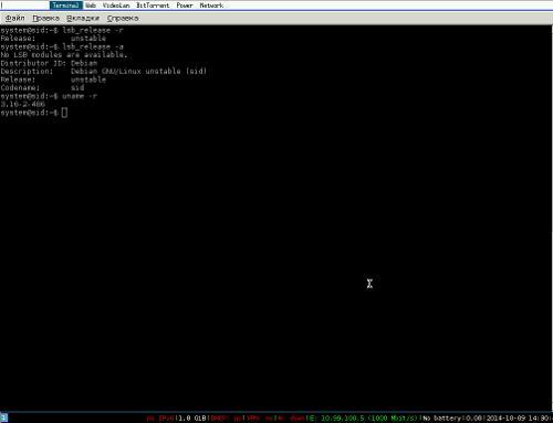 Установил я Debian Sid (unstable)