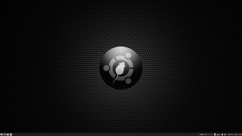 Моя ОС Xubuntu Core 15.04 x64