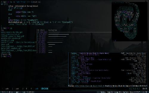 Кастомный Notion WM + Arch + vim(ну почти) + distribution.pl