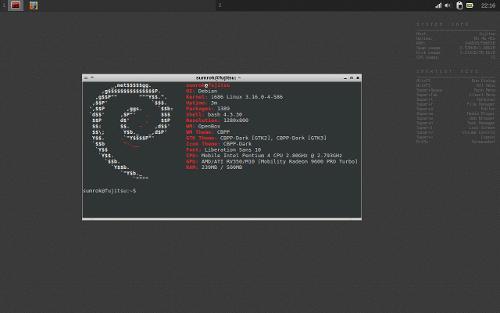 Crunchbang++ и повод для его установки.