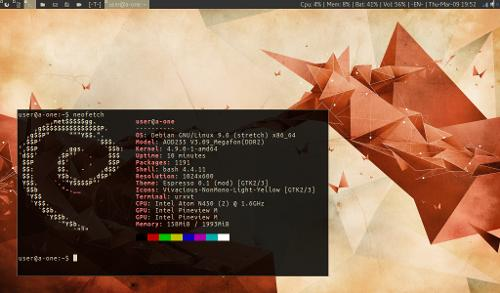 Debian 9 Stretch + dwm