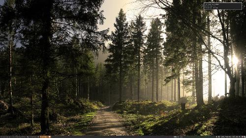 Лесной i3