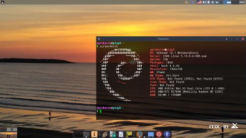 MX Linux на нетбуке