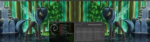 Скриншот: Debian 9.4 Stretch + XFCE4 + цветной жук