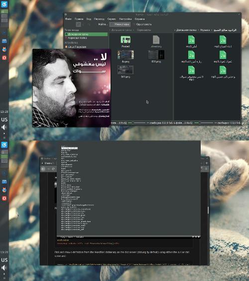 PiSi Linux— дефолтная система