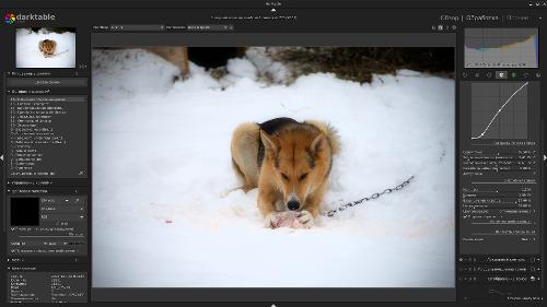 Скриншот: Darktable 2.6.0