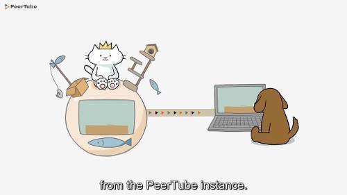 PeerTube 2.1 — свободная децентрализованная система видеовещания