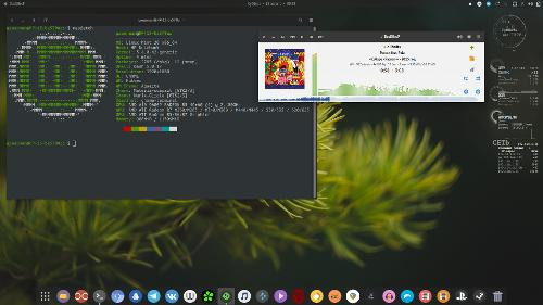 Ведро на A10-9600 + Linux Mint 20 + Gnome Shell