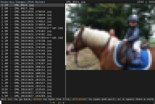 Broot v1.0.2 (консольная утилита для поиска и манипуляции с файлами)