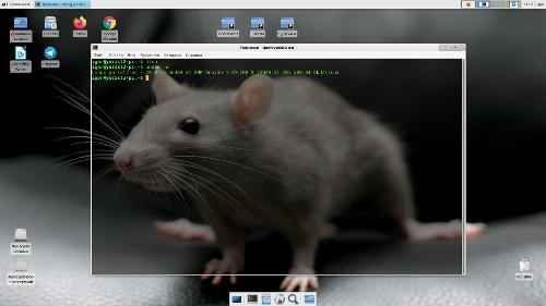 Debian Buster Xfce