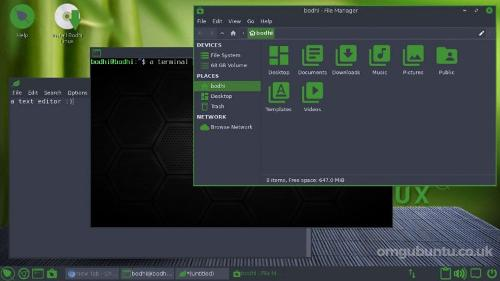 Bodhi Linux 6.0