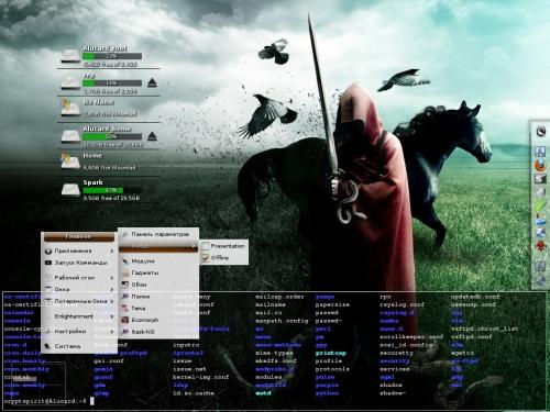 E17 + compiz +Debian