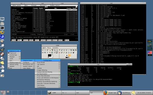 Slackware 10.2 Fluxbox на ноуте Dell