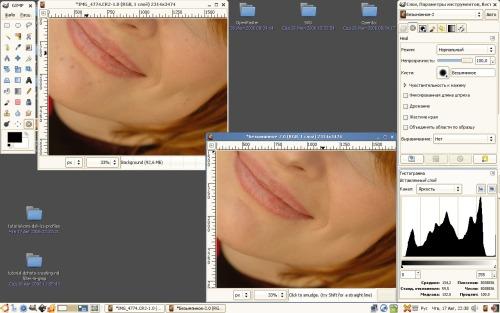 Мертвящий фотошоп - теперь и в GIMP :)