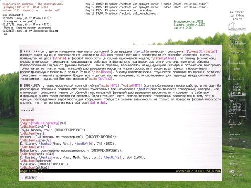 Диплом в NetBSD & ratpoison