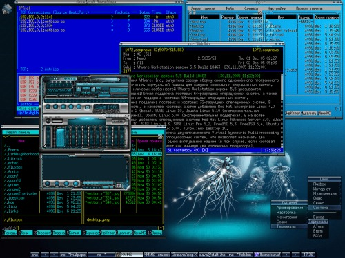 Mandrake 10.0 (Official) FluxBox