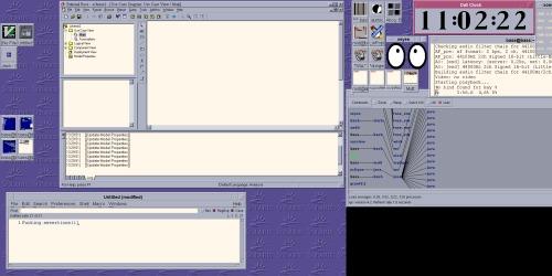 Rational Rose + Mwm + Xinerama + Linux 2.4