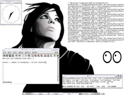 freebsd 4.8 + xvncserver