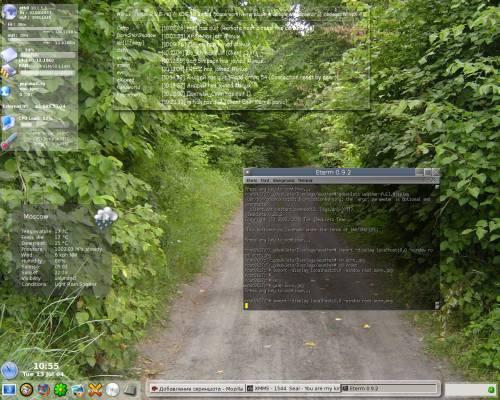Flux 0.9.9 + gDesklets