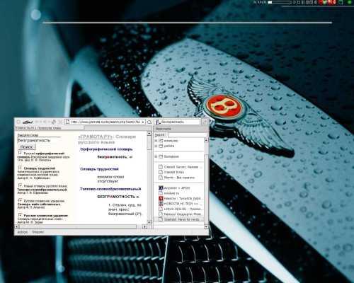 Fvwm,Firefox-0.9rc1