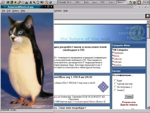 BlackCat Linux