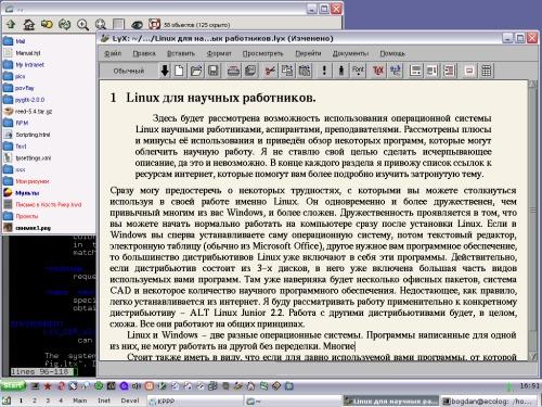 IceWM+SilverXP-рулит