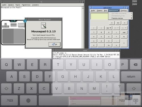 X11 приложения, нативно работающие на iPad