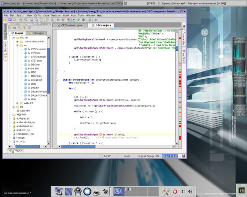 IntelliJ IDEA & Gentoo 2004.0