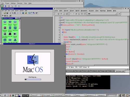 KDE2 + немного работы + VMWare + BasiliskII