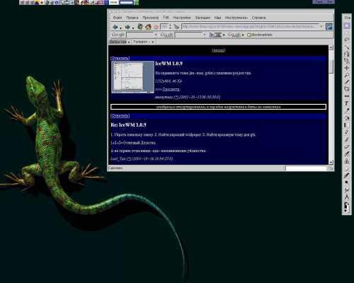 Re: IceWM 1.0.9
