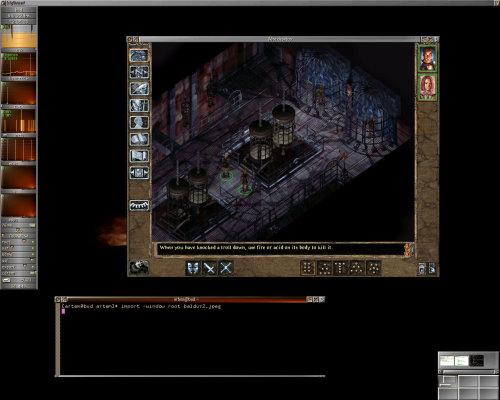 Baldur's Gate 2 в Wine