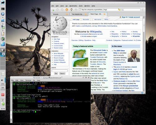 Midori-0.0.16 (git) / WebKit r29226