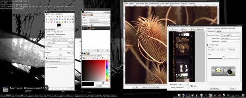 Сканирование слайдов в GNU/Linux