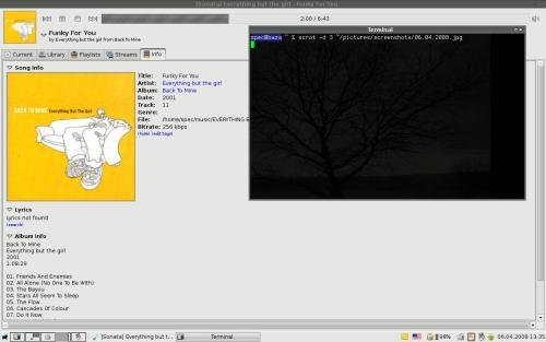 XFCE 4.4.2, Sonata 1.4.2
